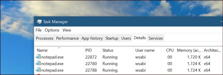 Screenshot of Windows Task Manager.